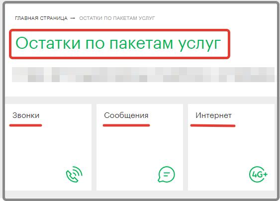 Интерфейс проверки пакетов на МегаФоне