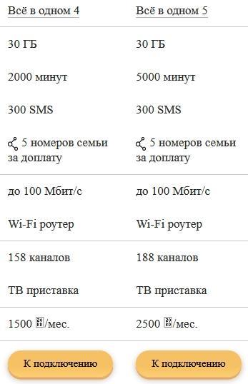 Обзор тарифов от Билайна для Воронежа в 2021 году