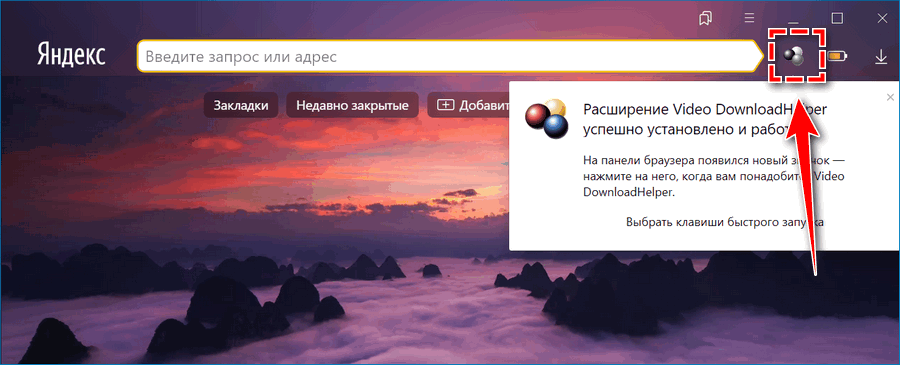Иконка DownloadHelper