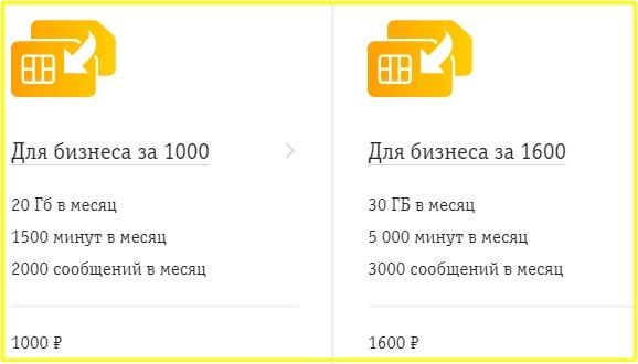 тарифы в барнауле для бизнеса за 1000, 1600 от билайн
