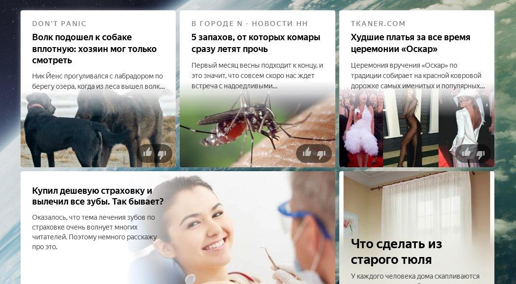 Как настроить ленту Яндекс Дзен под себя?